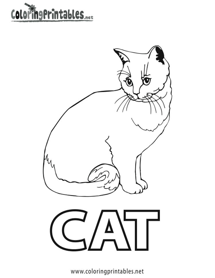Simple Realistic Cat Coloring Pages 1
