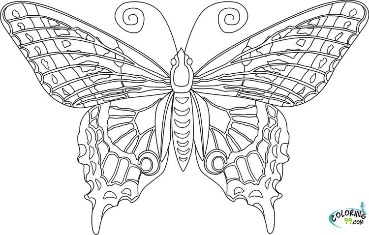 Single Adult Coloring Pages Printable Butterfly