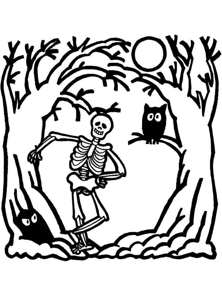 Skeleton Coloring Pages And Owl At Night