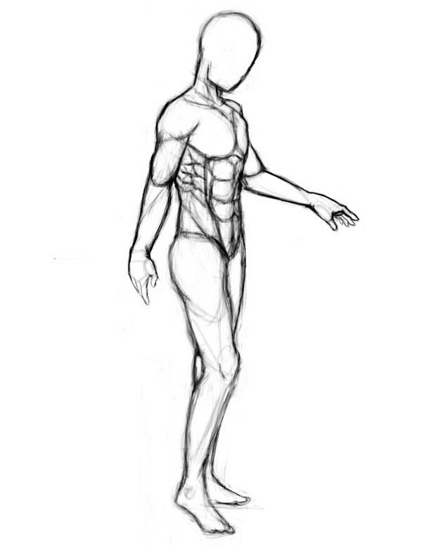 Sketch Of Human Anatomy Coloring Pages