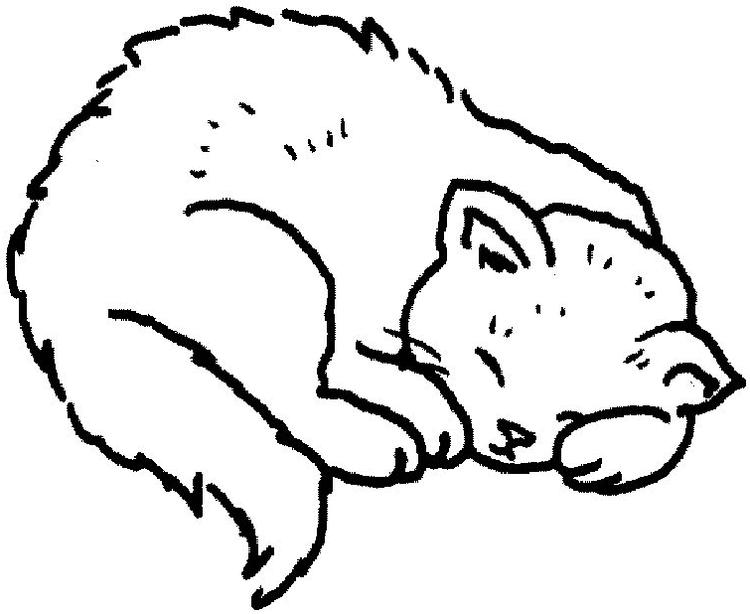Sleepy Coloring Pages For Kids Cat