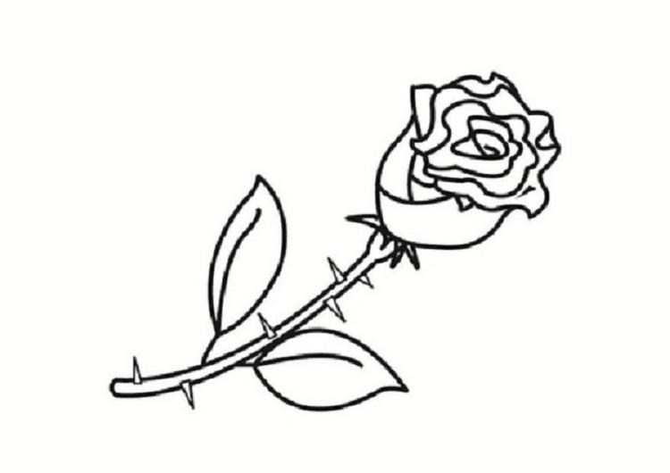 Small Rose Coloring Pages