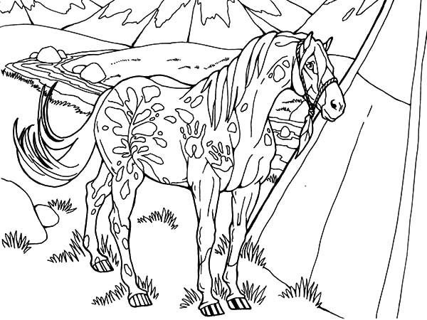 Snowflake Appalooshorse Coloring Pages