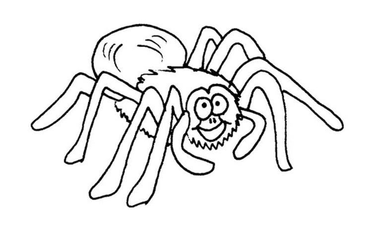 Spider Coloring Pages Printable For Kids