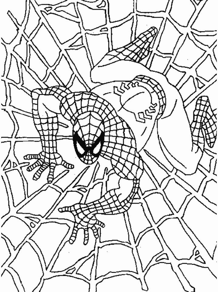 Spiderman Coloring Pages On Web