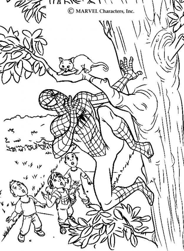 Spiderman Saving A Cat Spiderman Coloring Page