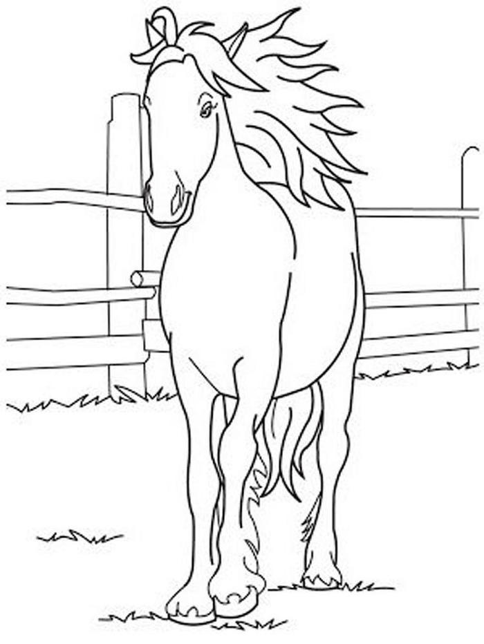 Spirit Horses Coloring Pages