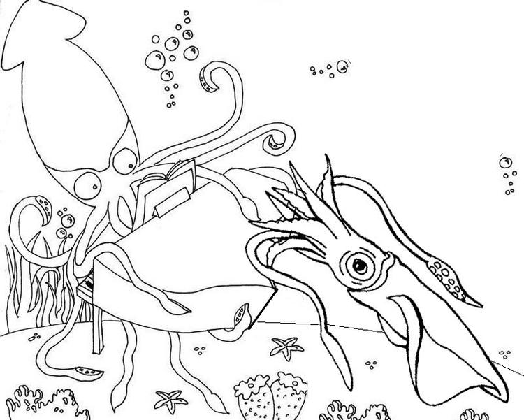 Squid Underwater Coloring Page