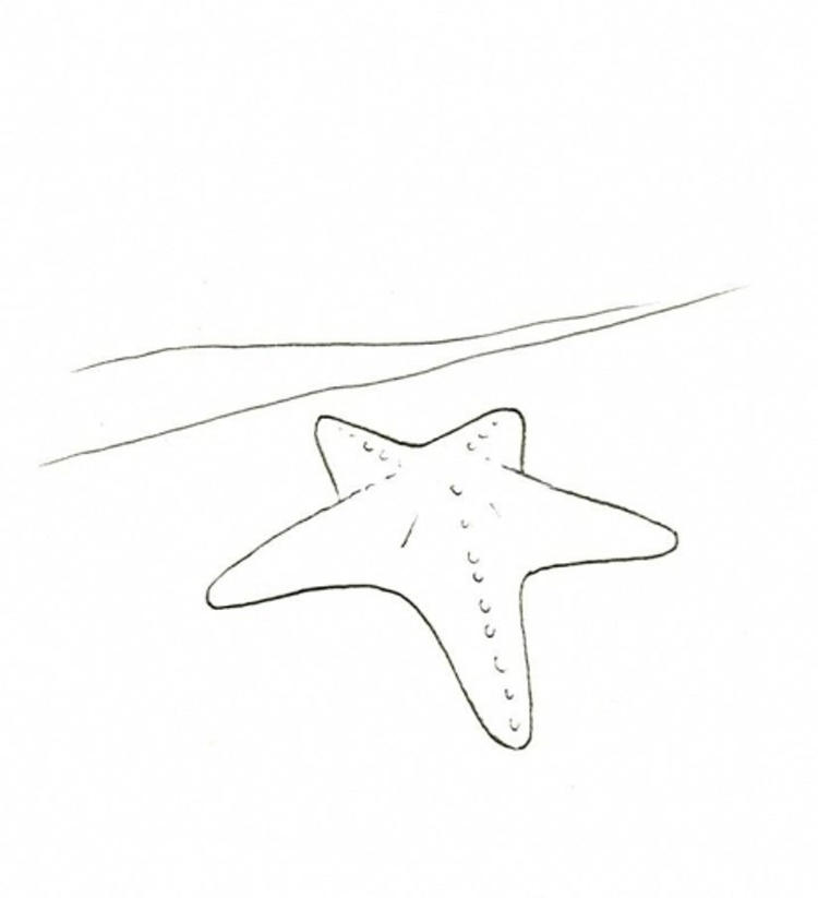 image relating to Printable Starfish named Starfish Coloring Internet pages Printable - Coloring Tips