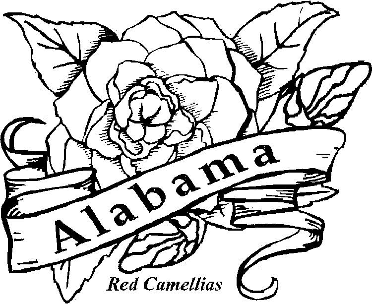 State Flower Coloring Pages