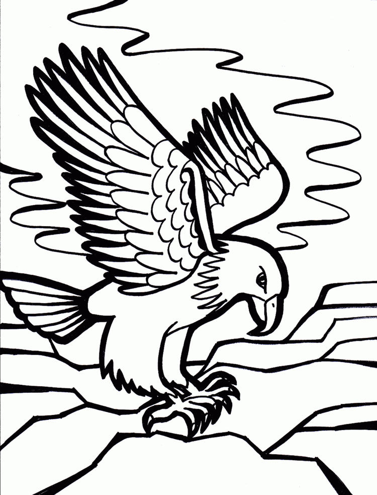 Strong Eagle Bird Coloring Page