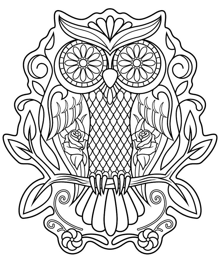 Sugar Owl Coloring Pages