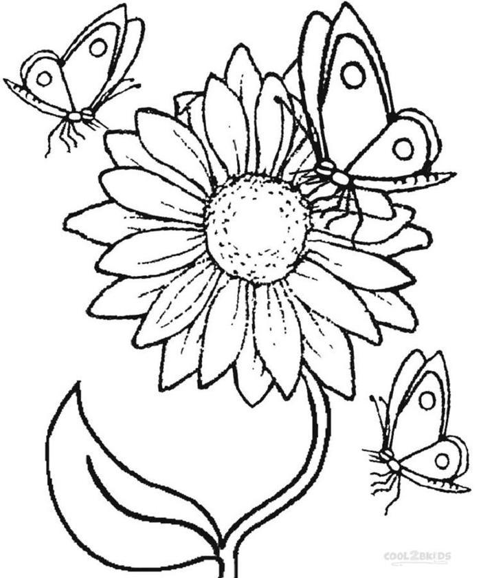 Sunflower And Butterflies Coloring Pages