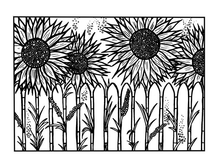 Sunflower Coloring Pages Behind The Fence