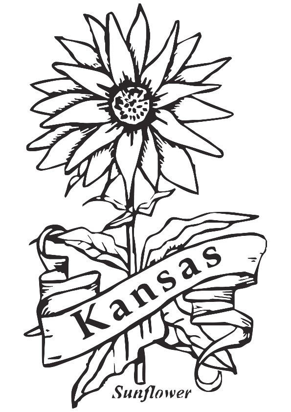 Sunflower Coloring Pages Kansas City