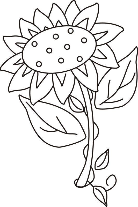 Sunflower Coloring Pages Printable For Kids