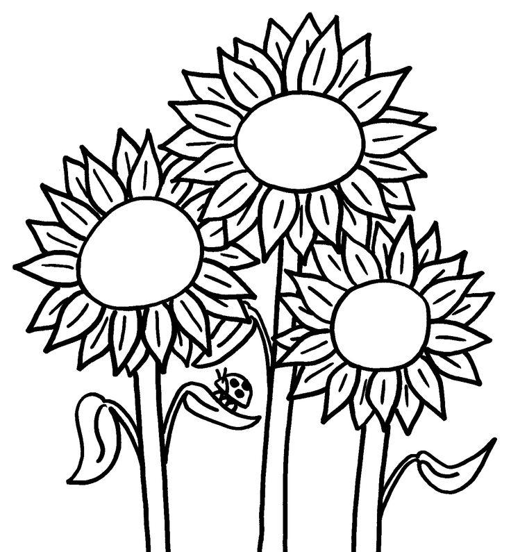 Sunflower Coloring Pages With Ladybug