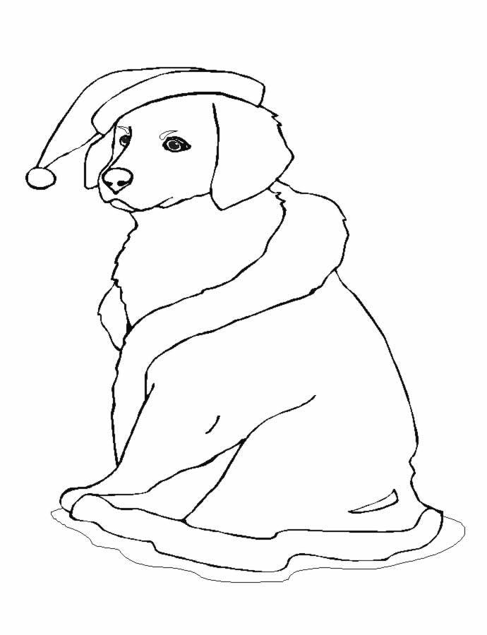 Sweet Christmas Dog Coloring Pages