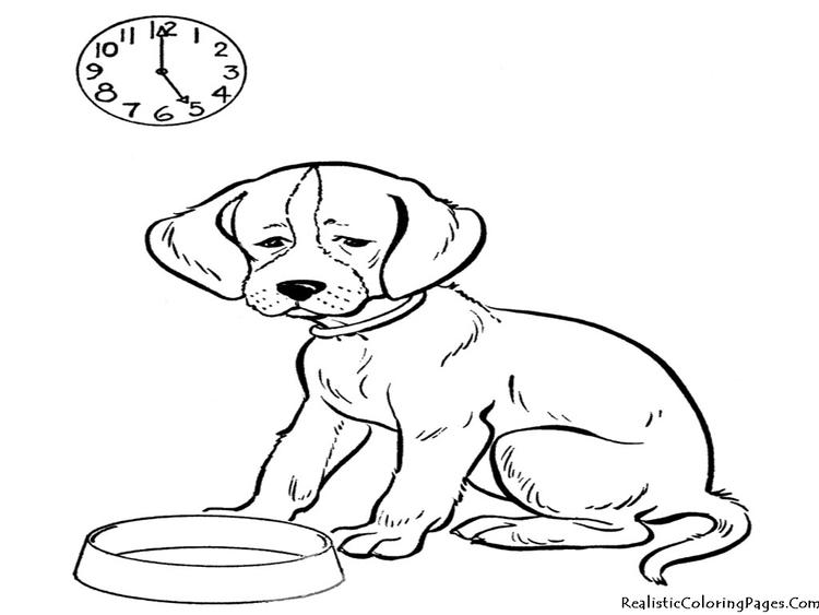 Sweet Realistic Dog Coloring Pages