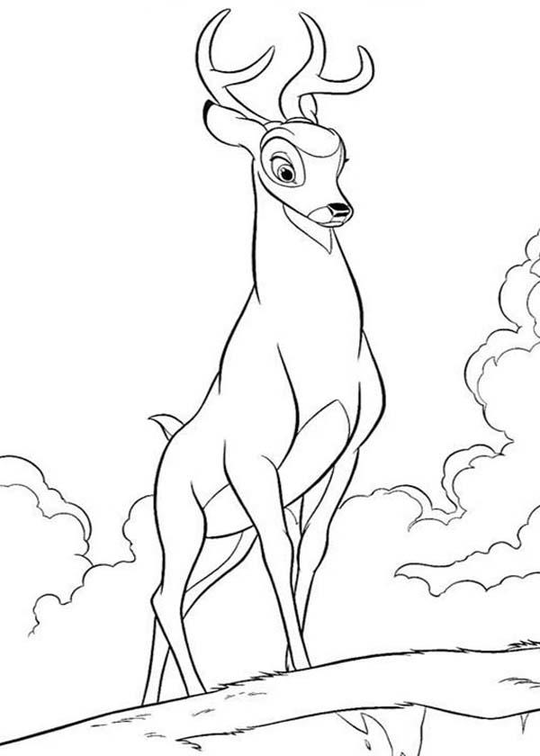 The Great Prince Of The Forest In Bambi The Movie Coloring Pages