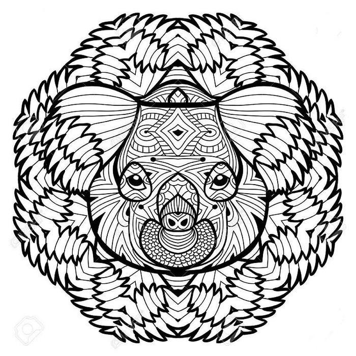 The Head Of The Koala Coloring Pages