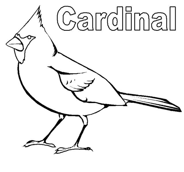 The Best Cardinal Coloring Sheet Printable