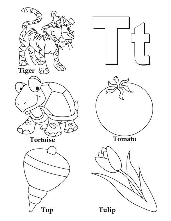 Things Comes With Letter T Coloring Page