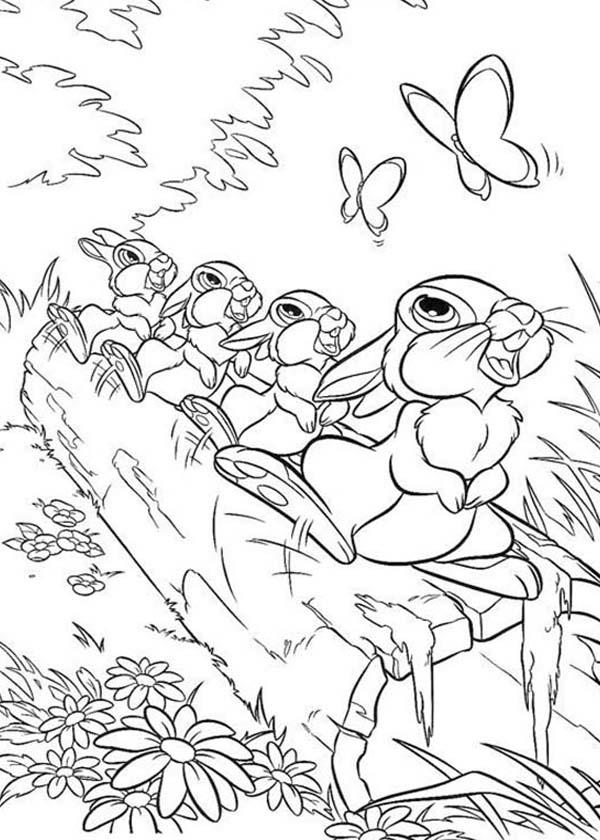Thumper and friends looking ar butterfly in bambi coloring pages