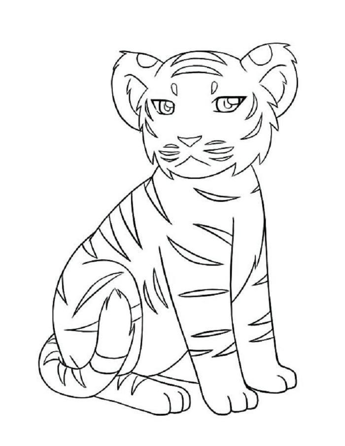 Tiger Coloring Pages Easy