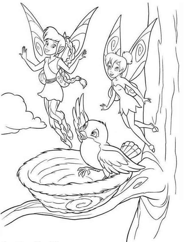 Tinkerbell Friend And Bird Coloring Page