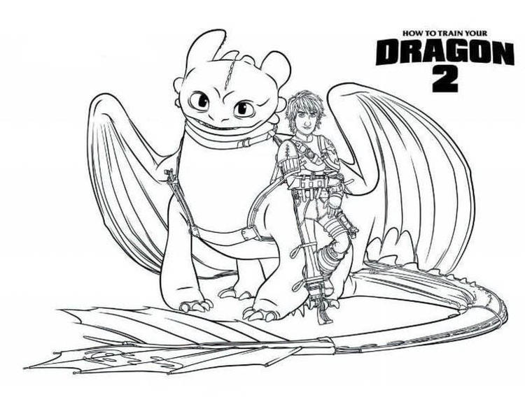 Toothless And Hiccup Are Bestfriends In How To Train Your Dragon Coloring Pages