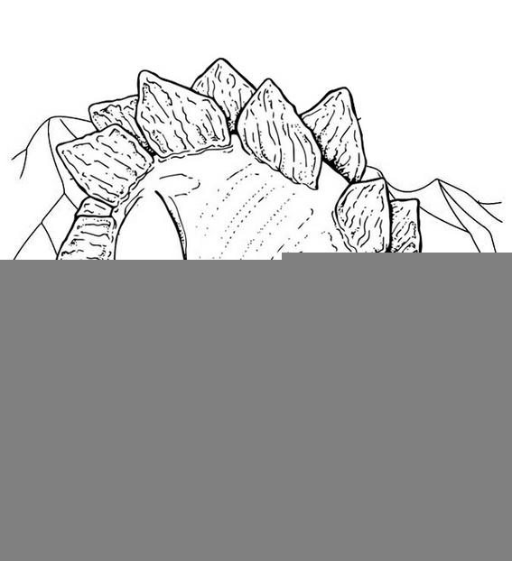 Top Stegosaurus Coloring Page For Children