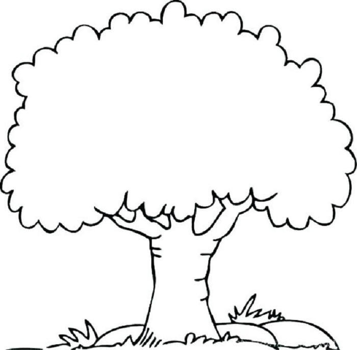 Tree Coloring Pages For Kindergartens