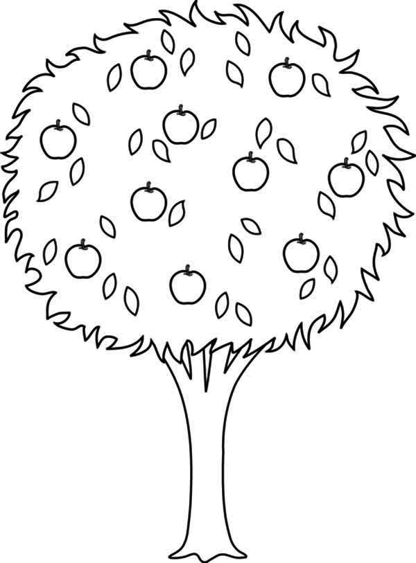 Tree Coloring Pages With Apples