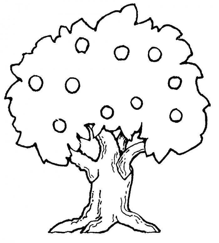 Tree Coloring Pages With Fruits