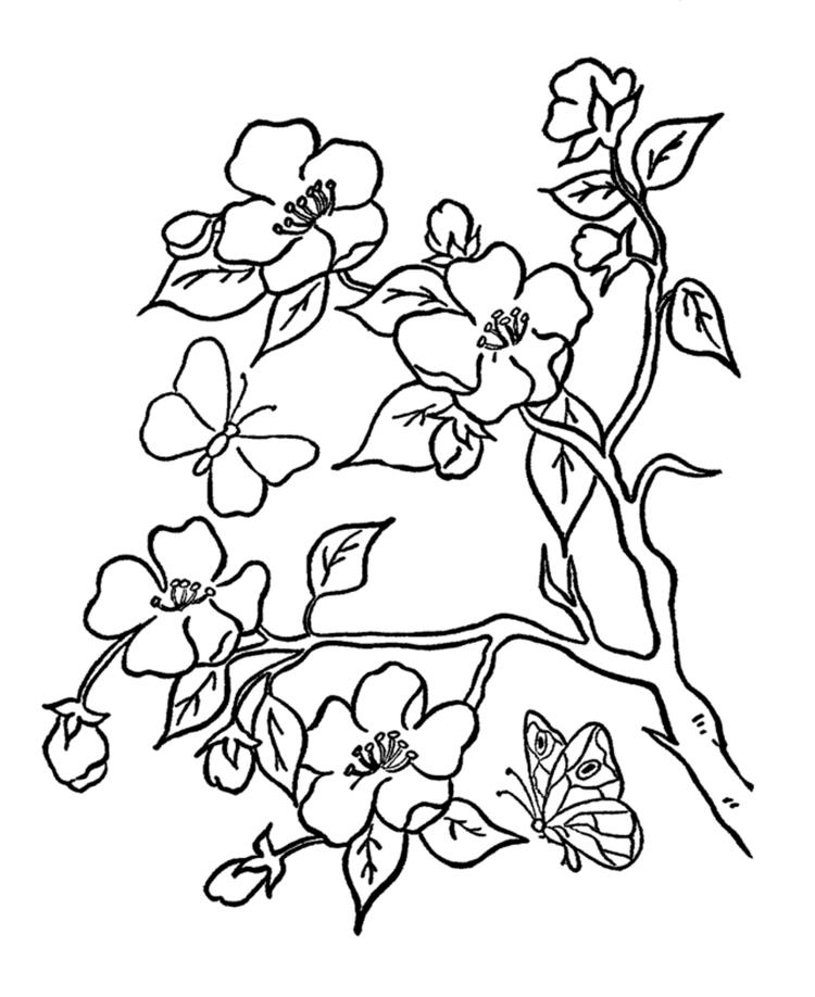 Tree Flower Coloring Pages With Butterflies