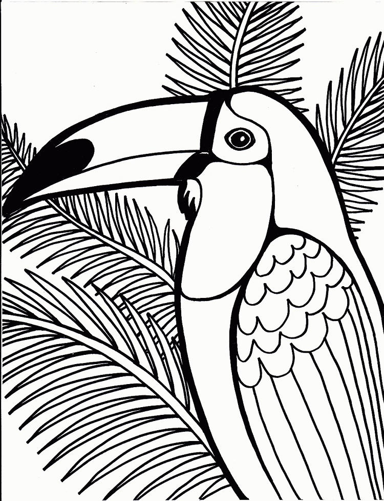 Tropical Bird Coloring Page