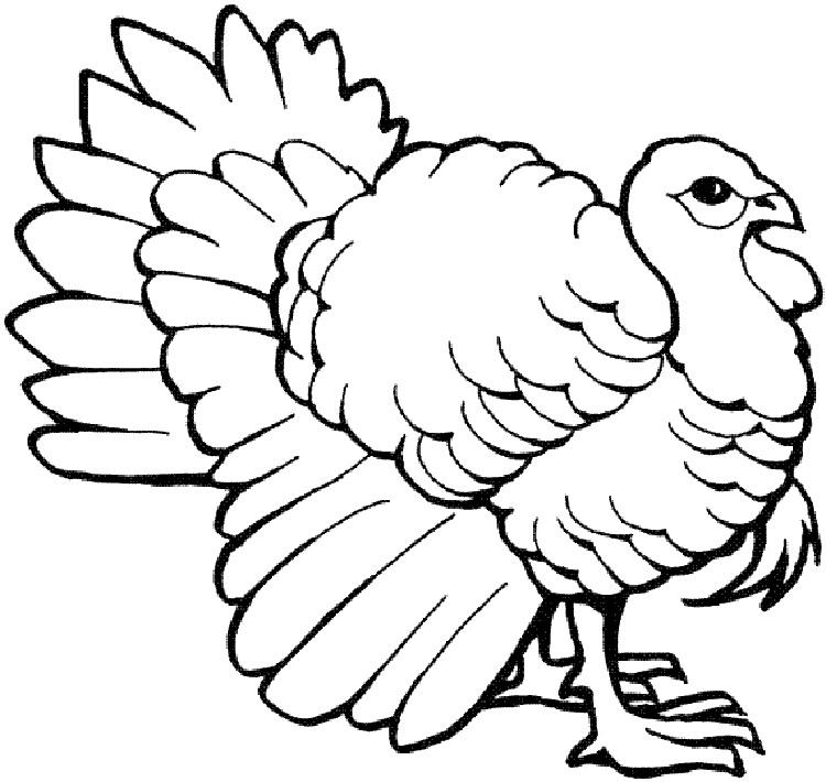 Turkey Coloring Activity Pages