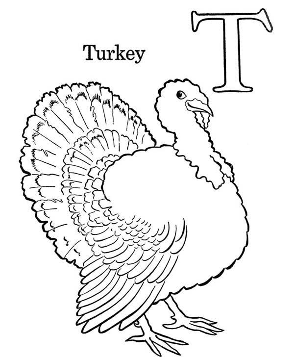 Turkey Is For Letter T Coloring Page