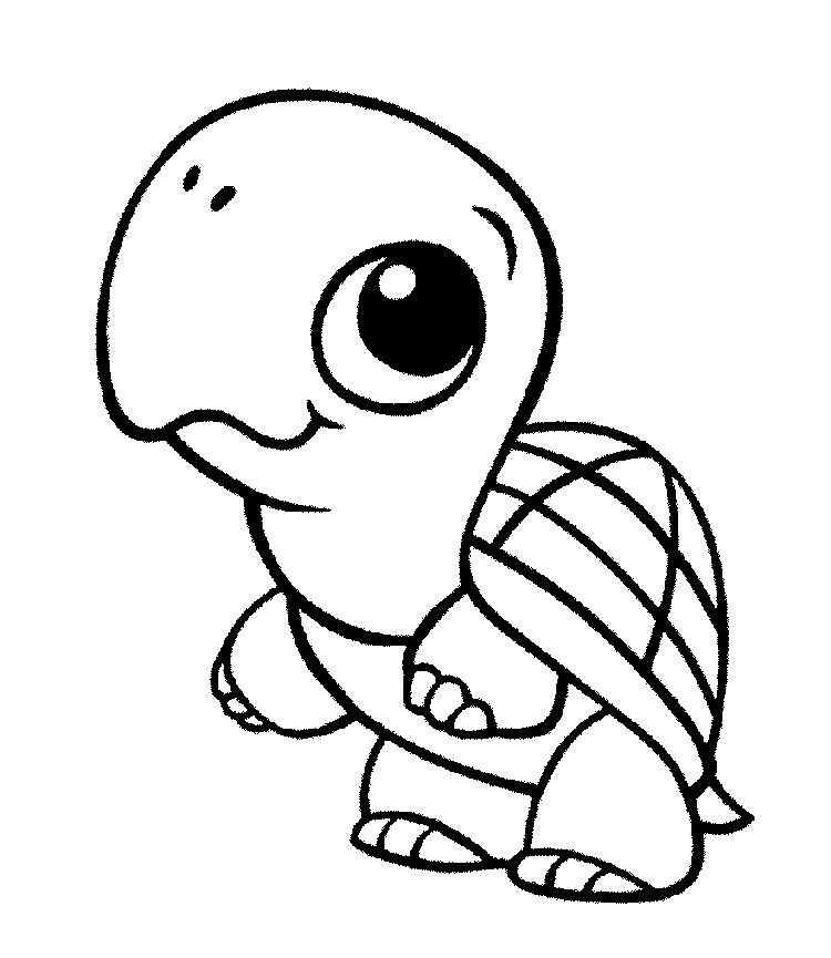 Turtle Coloring Pages Cute For Toddlers