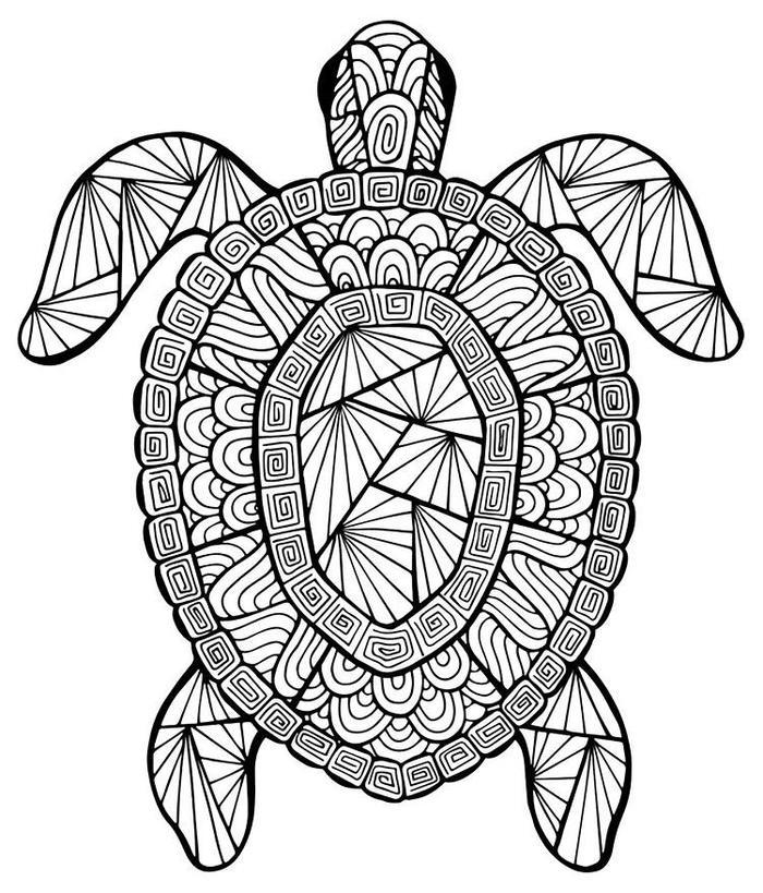 Turtle Mandala Coloring Pages