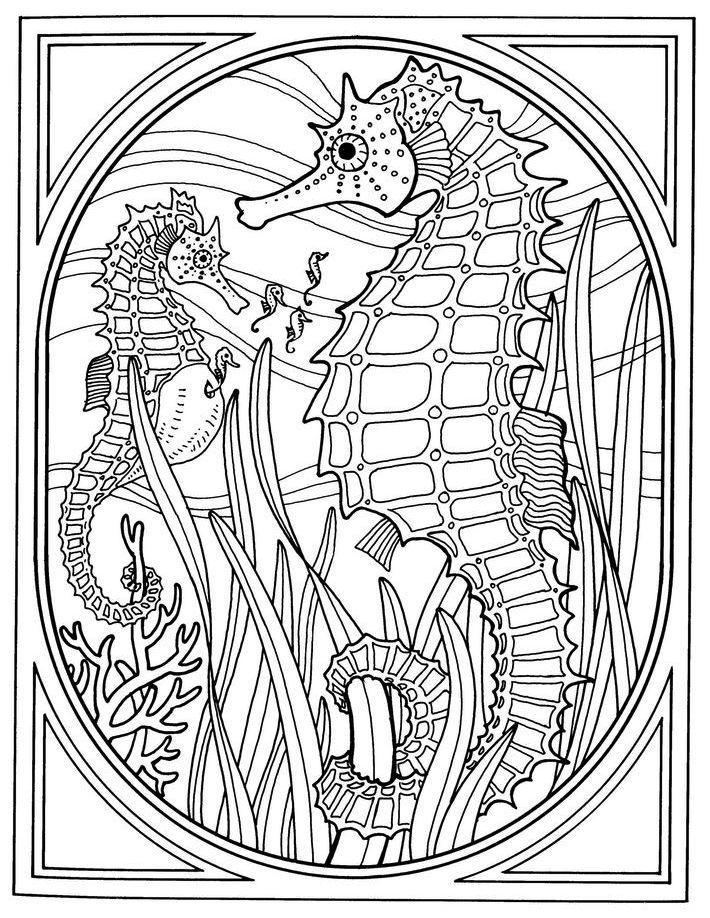 Two Seahorses Print Out Drawing