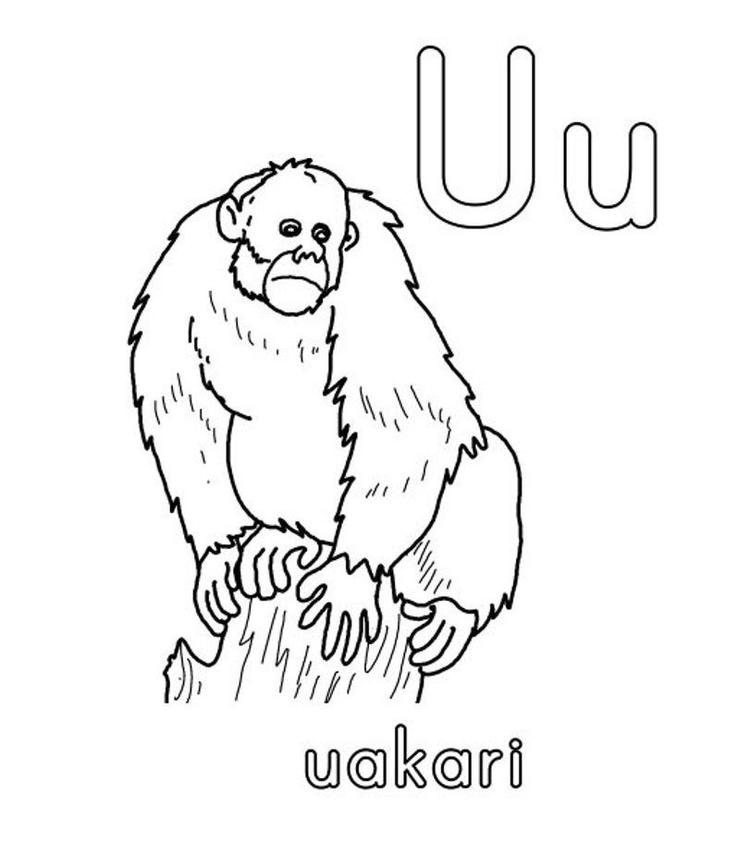 Uakari Alphabet Coloring Pages Free