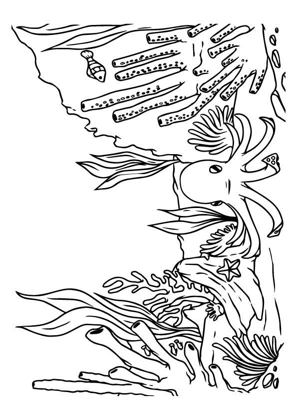 Under The Sea Coloring Pages Octopus