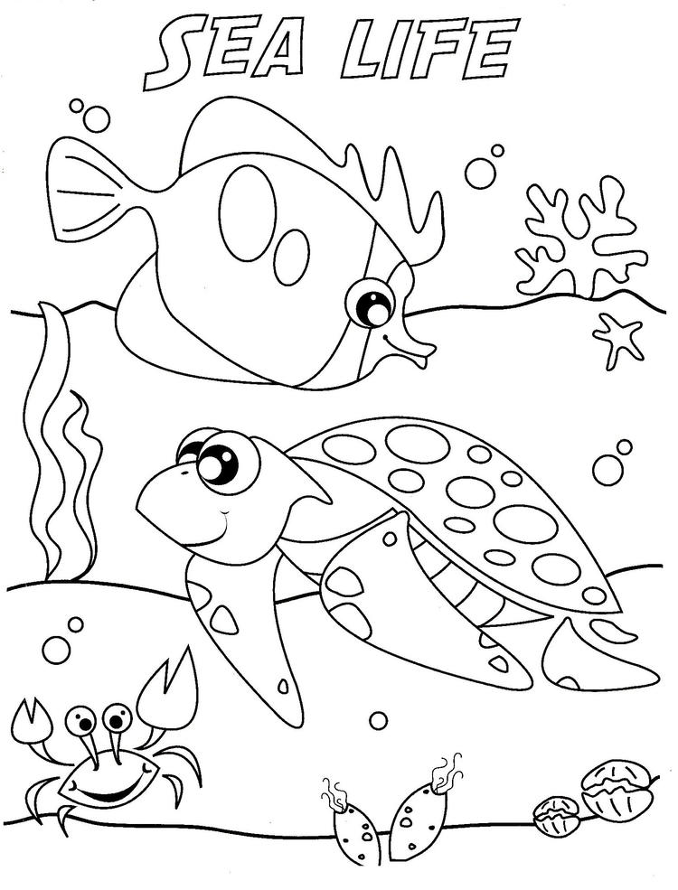 Under The Sea Coloring Pages Sea Life