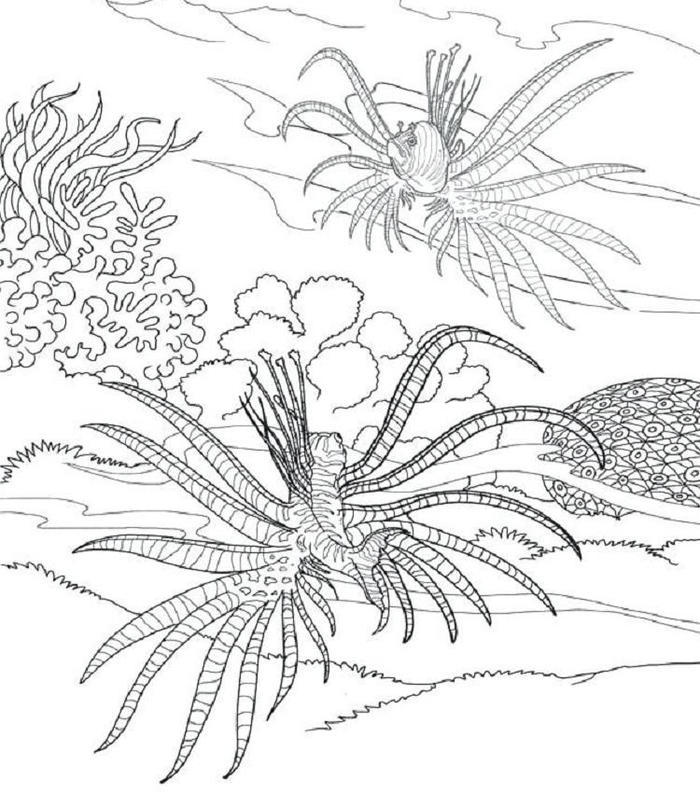Under The Sea Plants Coloring Pages