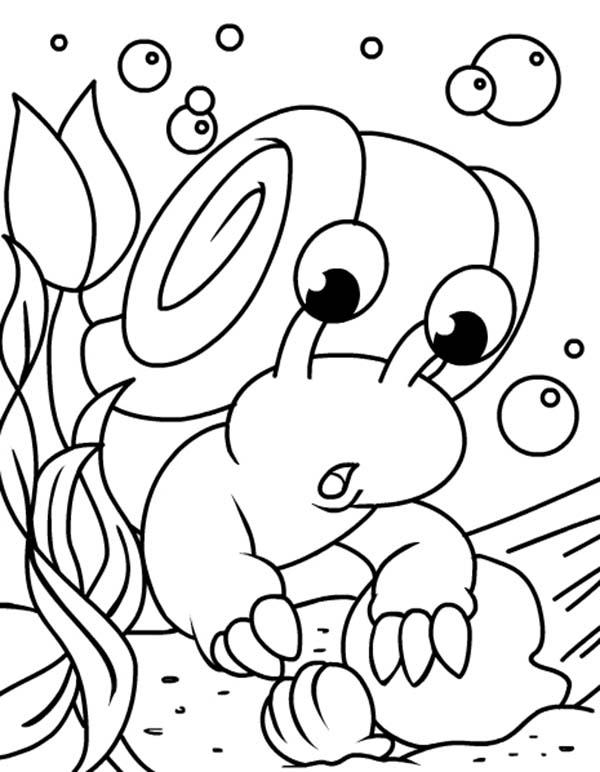 Under Water Neopets Found An Oyster Coloring Pages