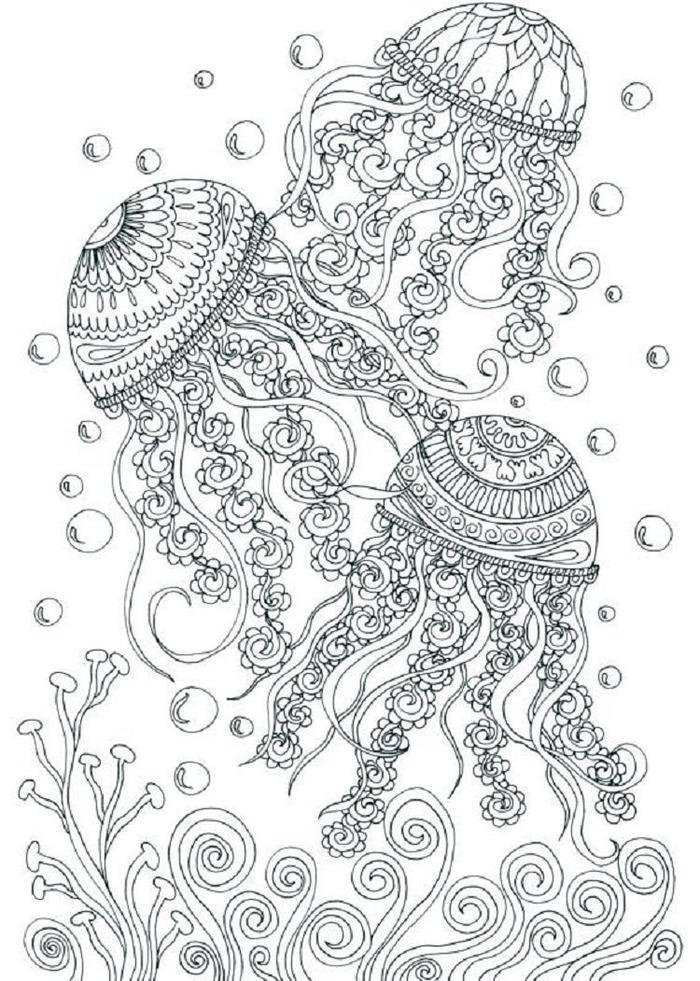 Underwater Coloring Pages For Adults