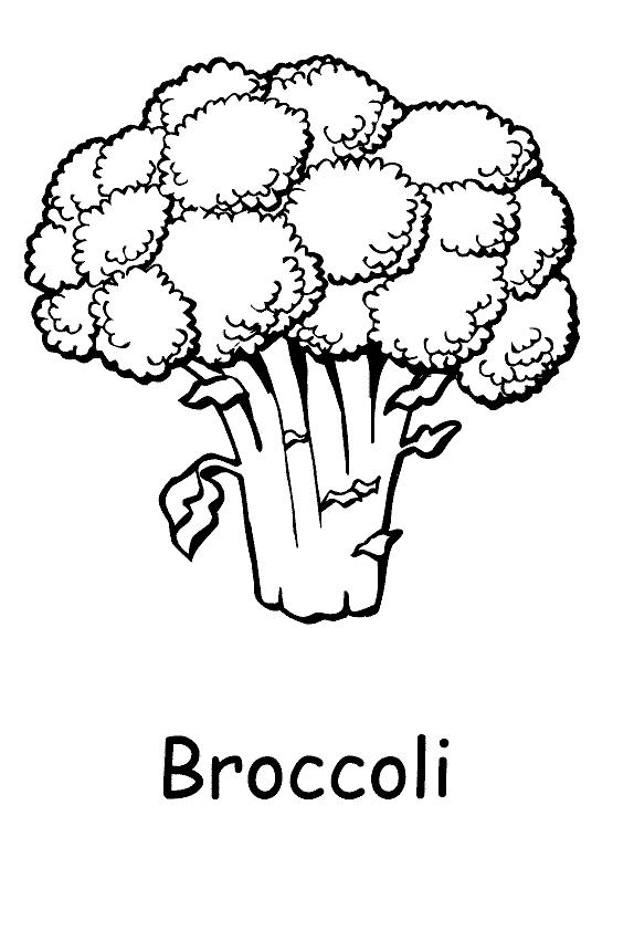 Vegetable Coloring Pages Broccoli
