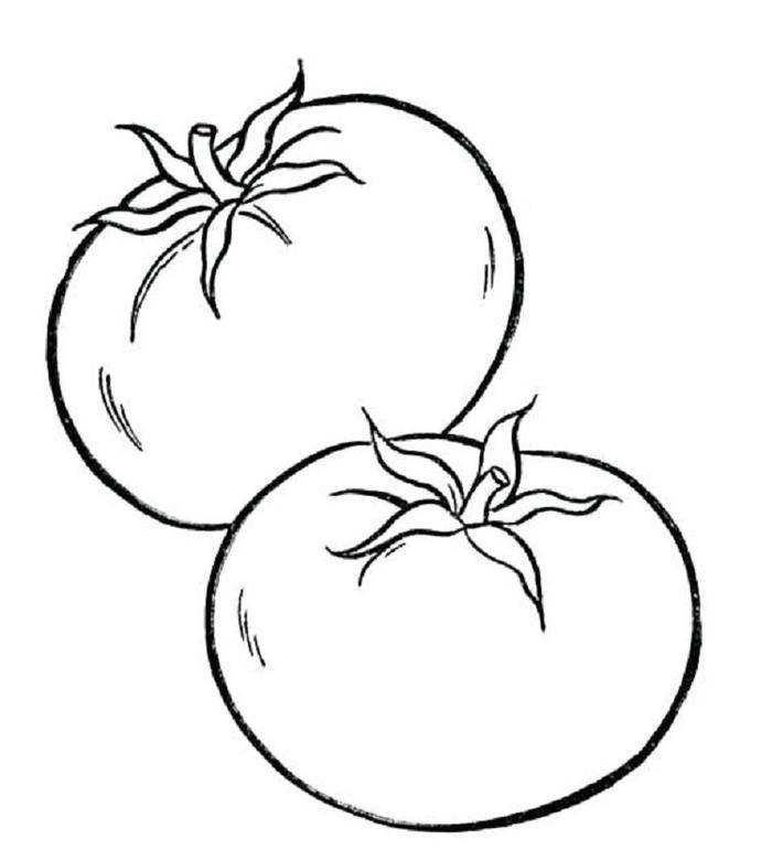 Vitamin c in tomato coloring pages